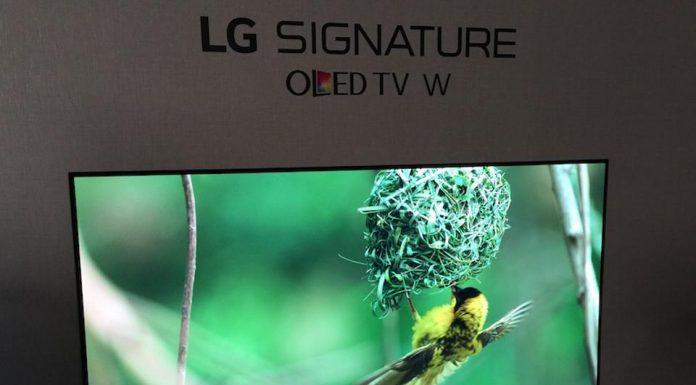 LG Wallpaper OLED TV Bird