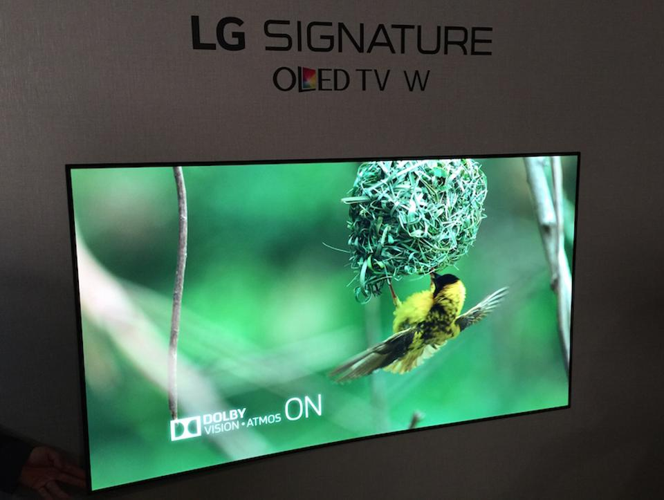 LG Wallpaper OLED TV Bird