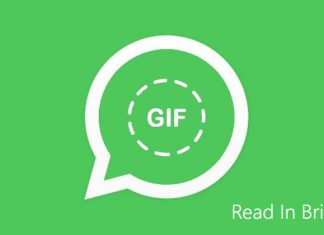 WhatsApp GIF Update